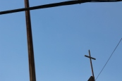 Crosses x CSHOT