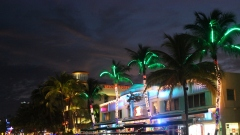 South Beach Nights x CSHOT